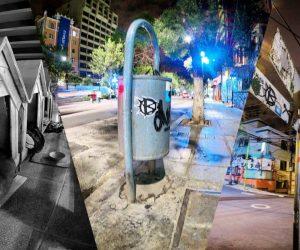 BARK_se_apodera_de_la_ciudad[1]